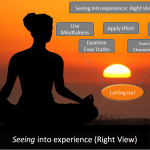 Anatomy of Seeing into Experience: Right View