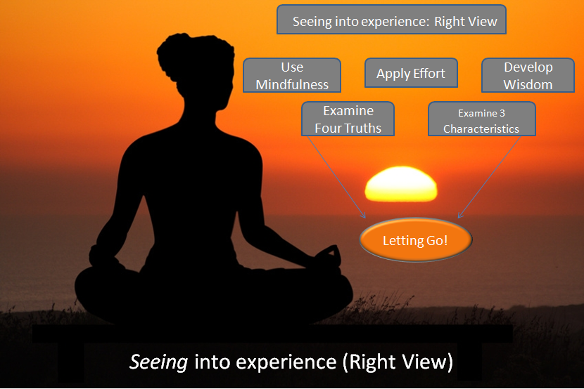 anatomy of seeing into experience right view secular buddhist