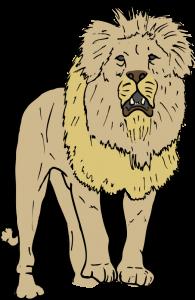 SteveLambert_Lion