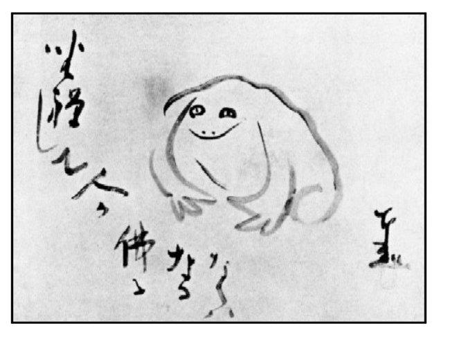 meditating frog 2