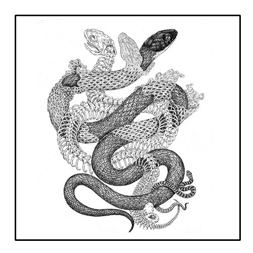 The Snake: Translating Ancient Verses | Secular Buddhist Association