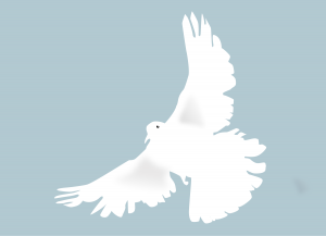 colombe-clipart