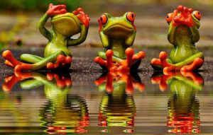 speak no evil hear no see no evil frogs
