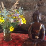 My First Retreat (Part 1 of 3) – a Zen sesshin at Rocky Mountain EcoDharma